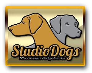 Studios Secret Soul